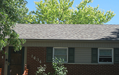 roofing photo #9
